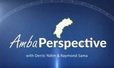 Amba Perspective 1st Anniversary Edition