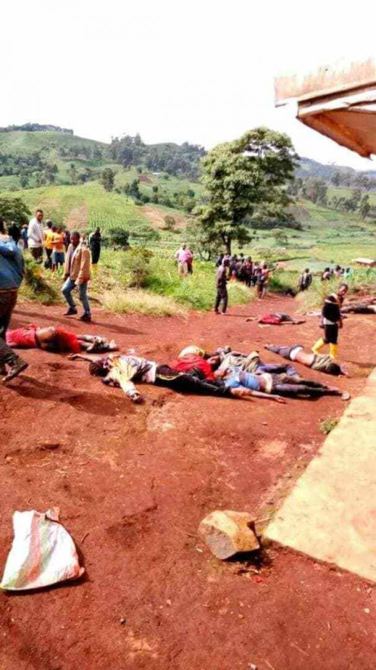 Genocide in Ambazonia: Investigative Journalist Uncovers New Horrible Killing Strategy